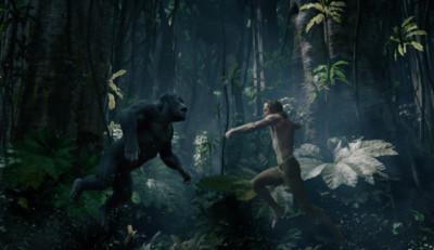 AGM-Main-Tarzan